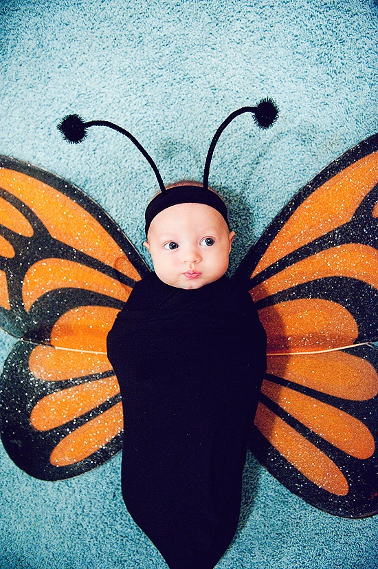 CUTE BABY HALLOWEEN COSTUMES  sc 1 st  Mommy Status & CUTE BABY HALLOWEEN COSTUMES - Mommy Status