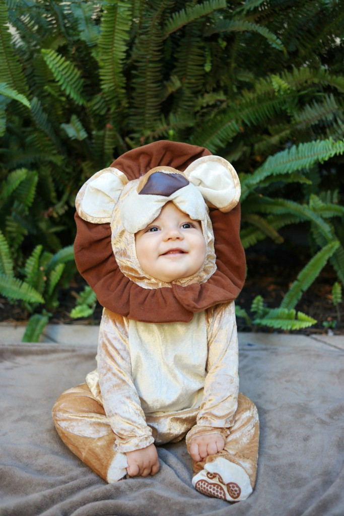 baby lion costume, cute baby costume