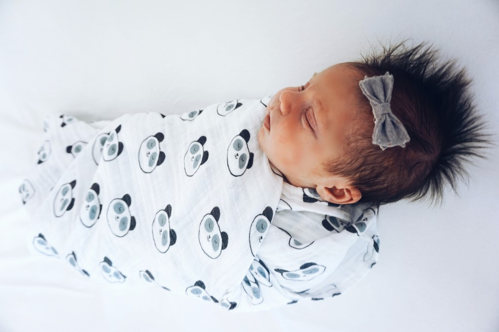 Swaddle Designs muslin swaddles, panda swaddle, baby swaddle, cute baby swaddles, animal print swaddles, black and white swaddles, modern swaddle, modern swaddle blanket